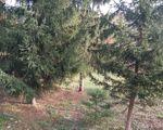 Eladó Telek/földterület Veszprém