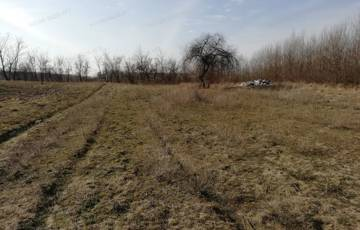 Eladó telek/földterület