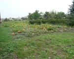 Eladó Telek/földterület Hort