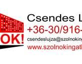 Eladó lakás Szolnok 21 900 000 Ft
